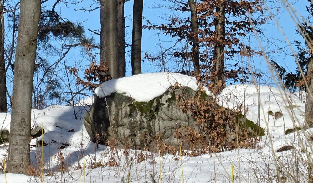 drachenkopf im schnee