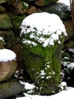 kopf garten winter