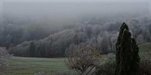 winter nebel blick